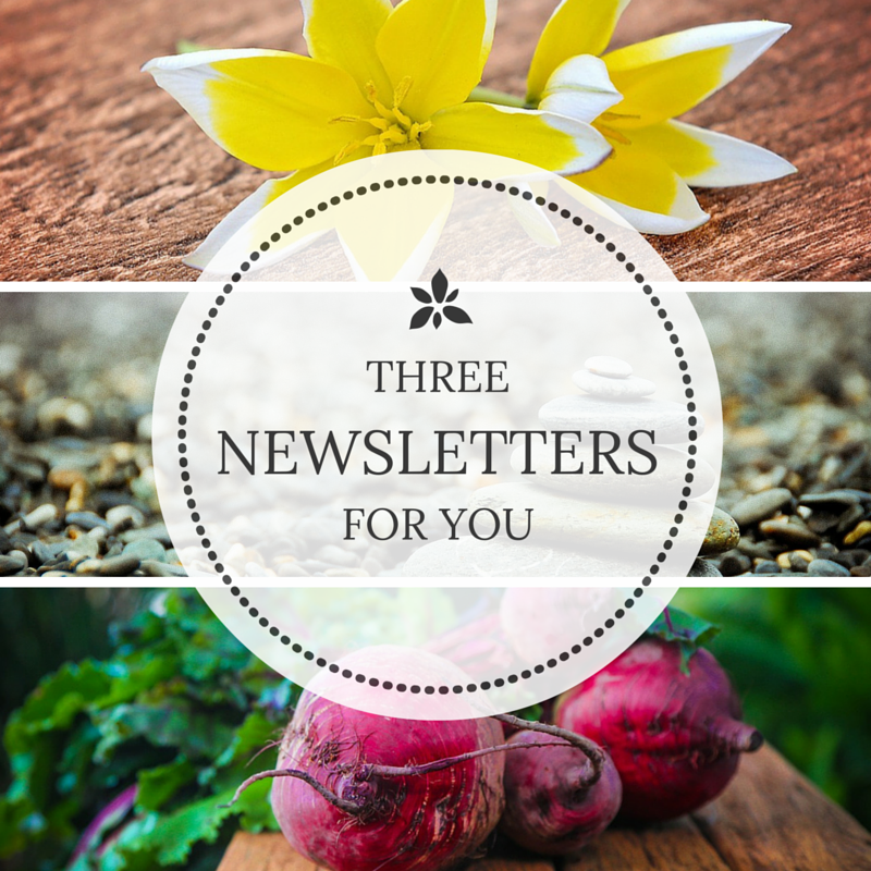 3 Newsletters