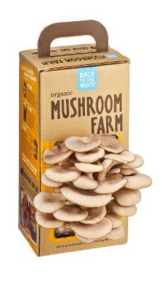 Back-to-the-roots Mushroom Farm